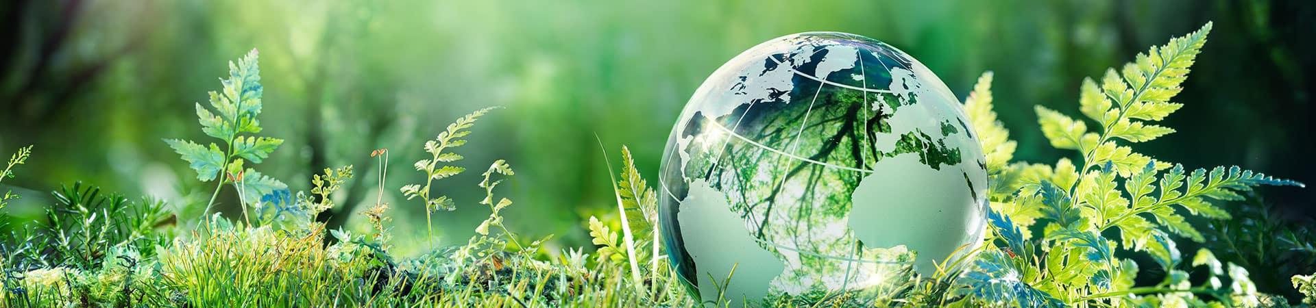 Nachhaltigkeit Nachhaltigkeitsfaktoren Vergütunspolitik